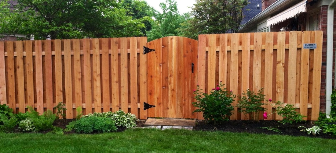 Fence pictures glidden fence company inc western red cedar dog eared shadowbox with arched gate workwithnaturefo